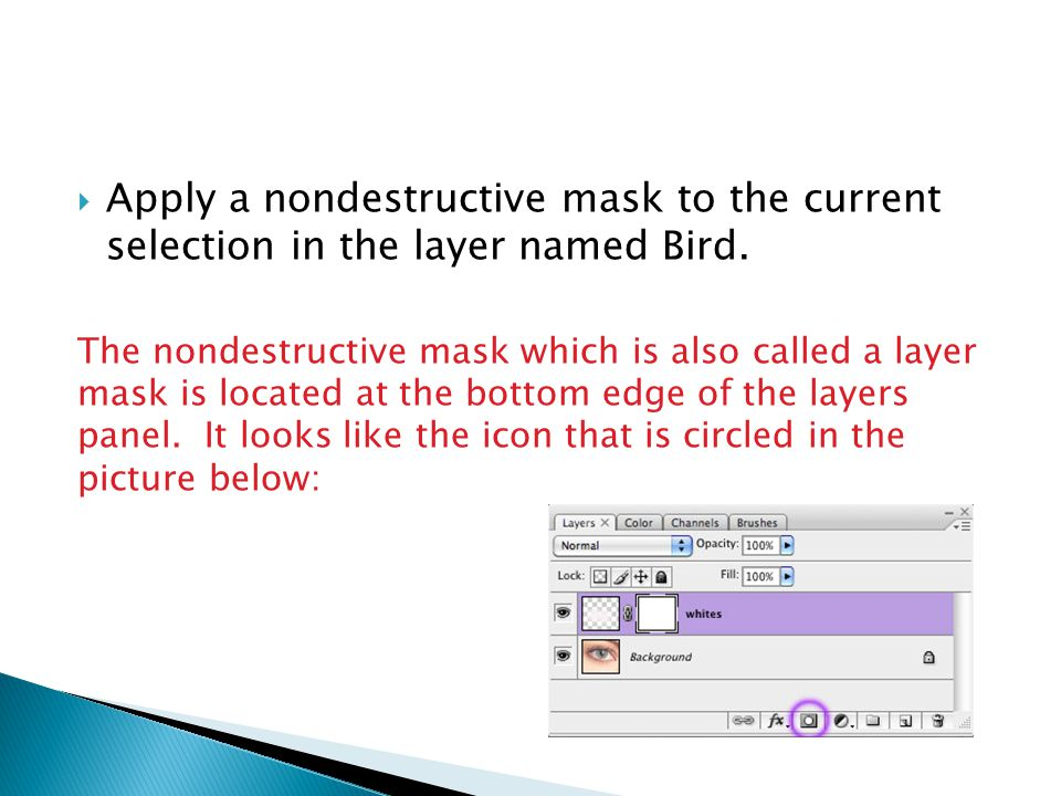 Apply a nondestructive mask to the current selection in the layer named Bird.