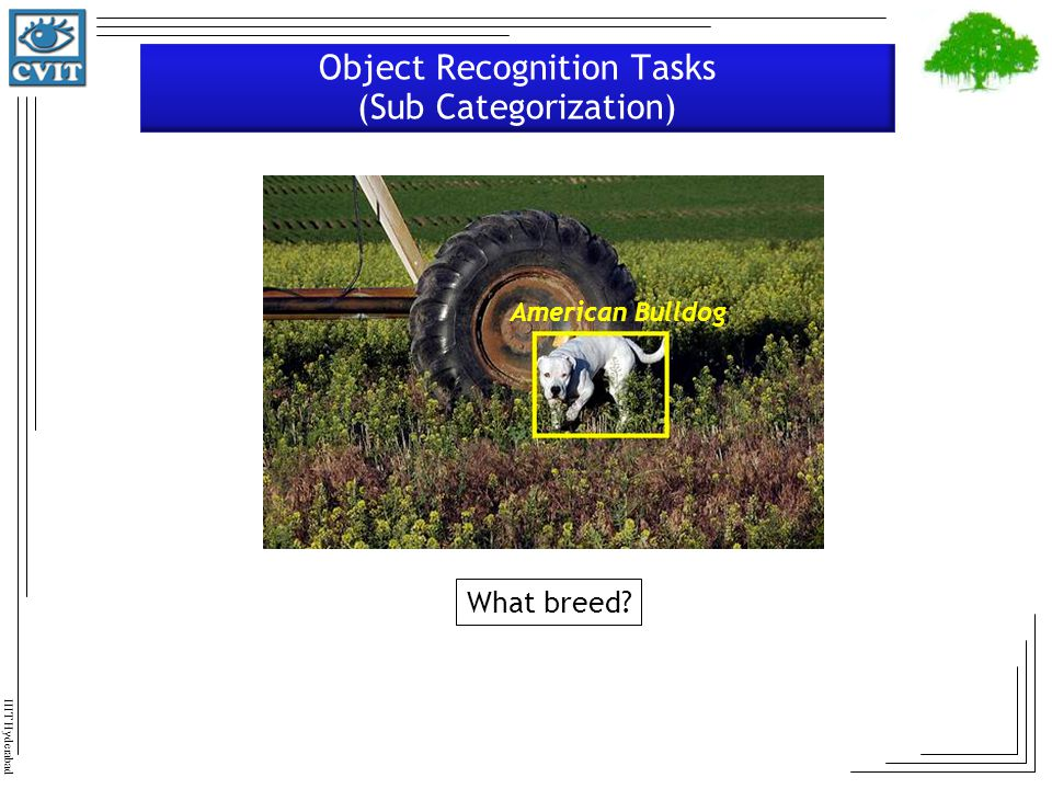 Object Recognition Tasks (Sub Categorization)