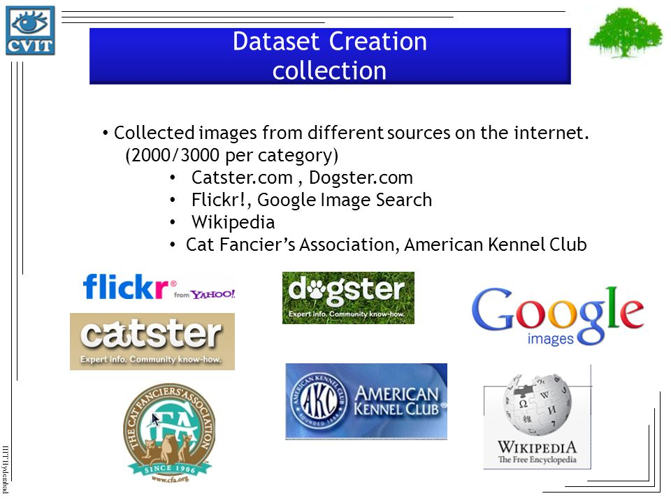 Dataset Creation collection