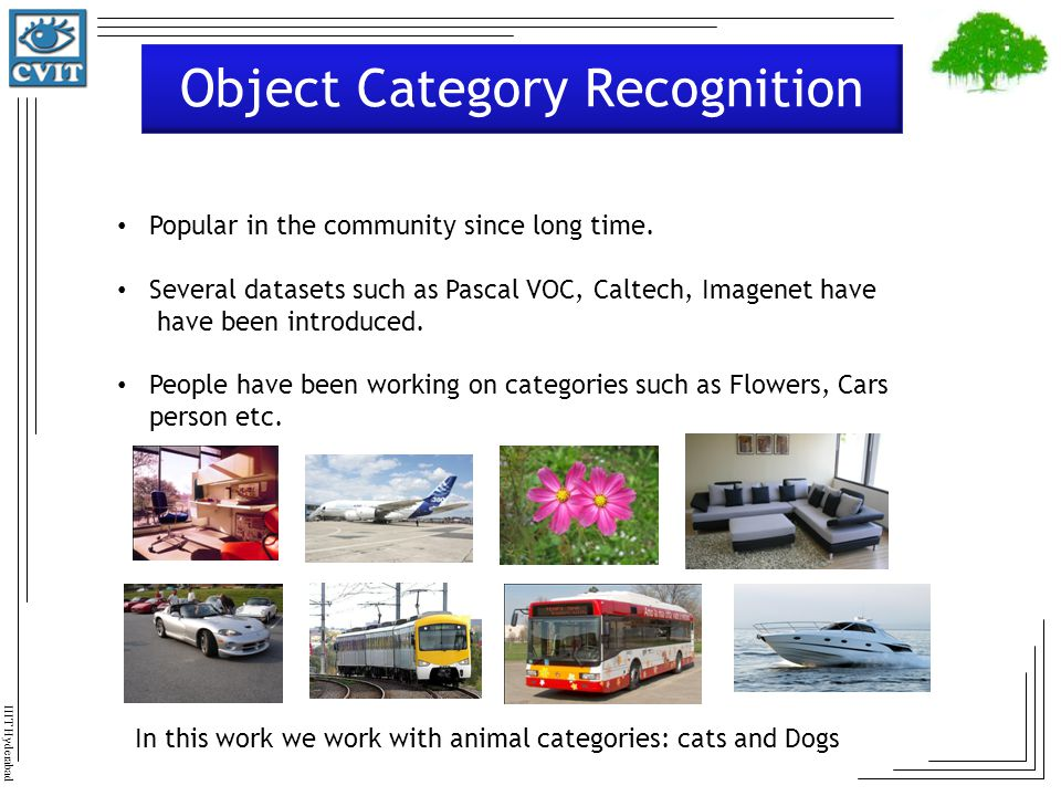 Object Category Recognition