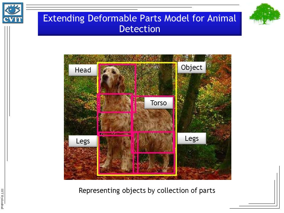 Extending Deformable Parts Model for Animal Detection