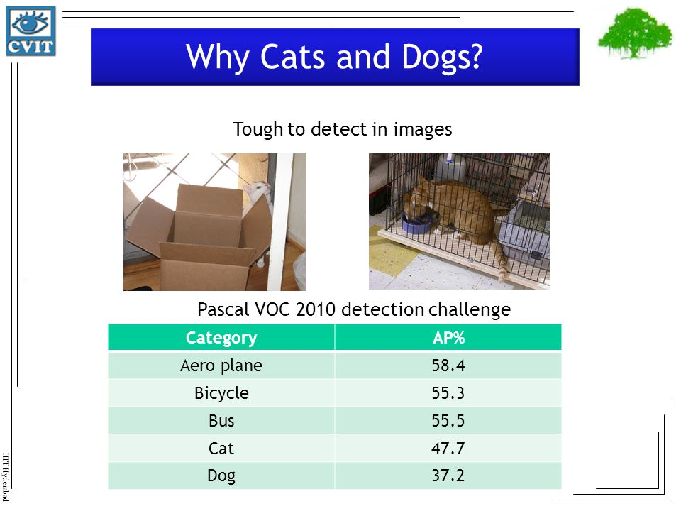 Why Cats and Dogs Tough to detect in images