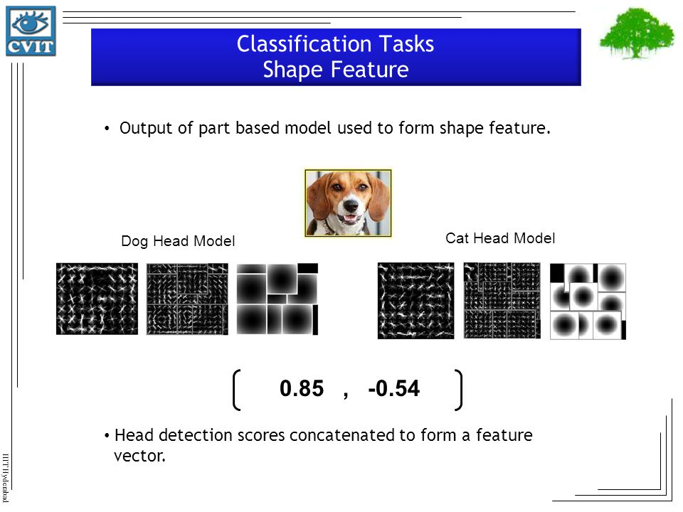 Classification Tasks Shape Feature