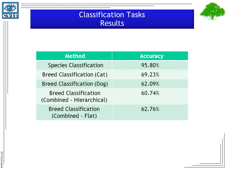 Classification Tasks Results
