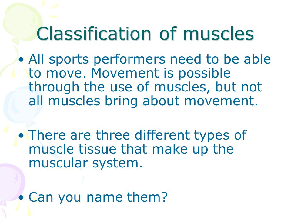 Classification of muscles