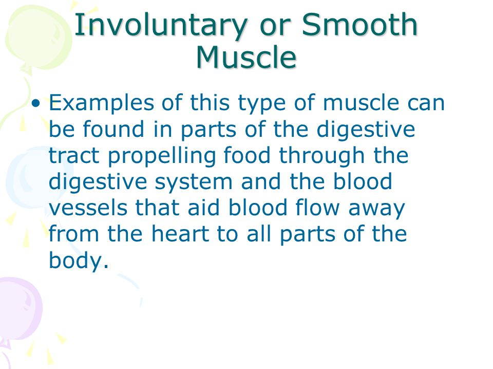 Involuntary or Smooth Muscle