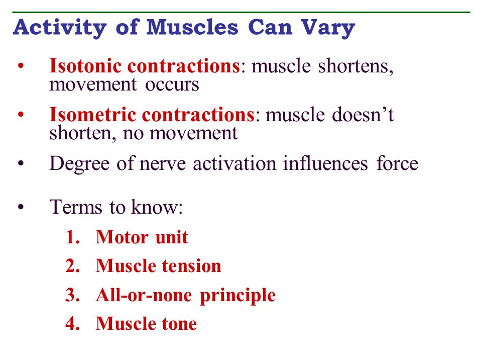 Activity of Muscles Can Vary