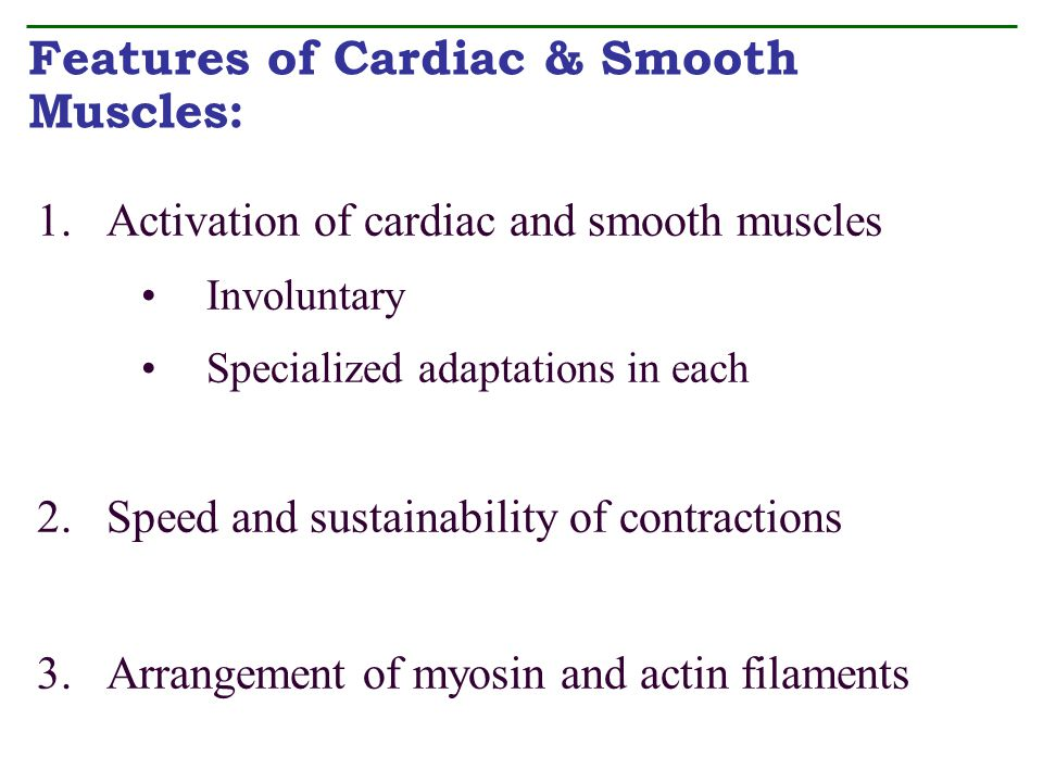 Features of Cardiac & Smooth Muscles: