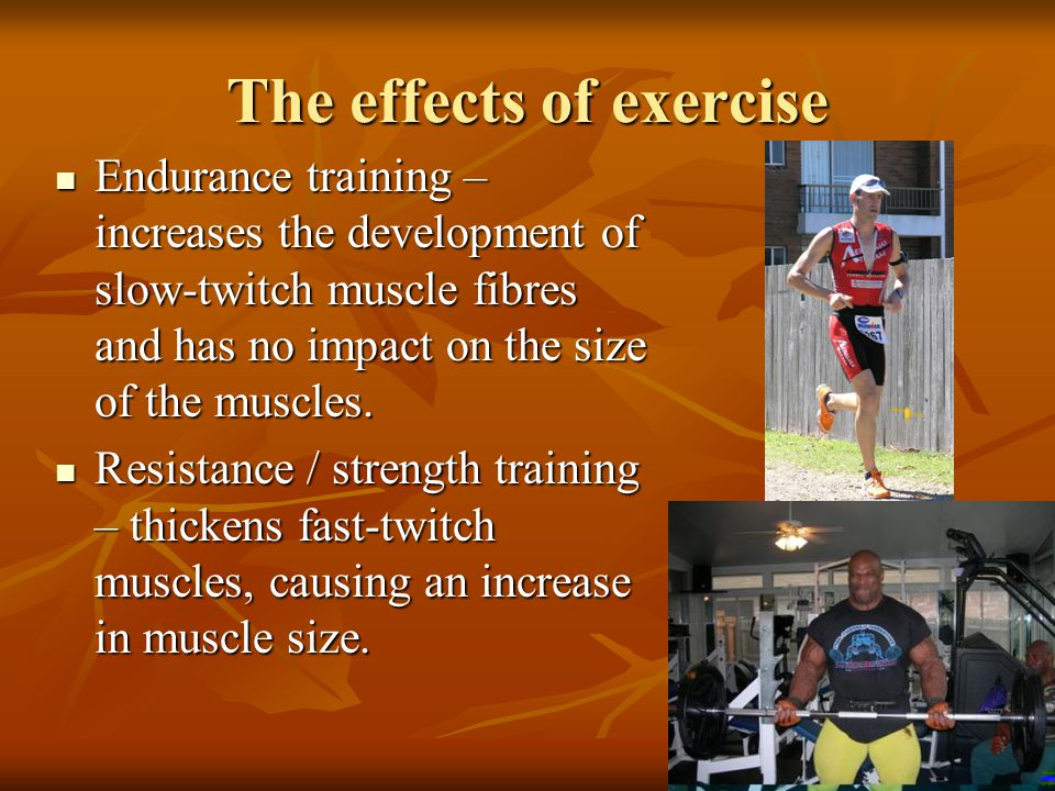 The Motor System Muscles. - ppt download