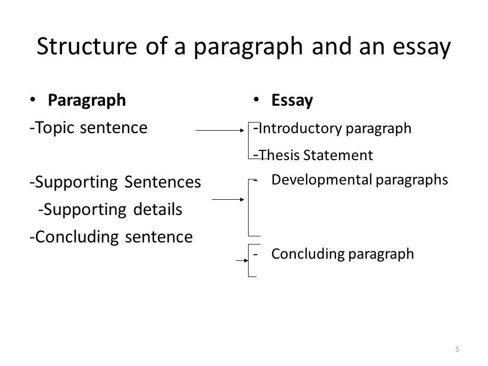 rhetorical structure of an essay