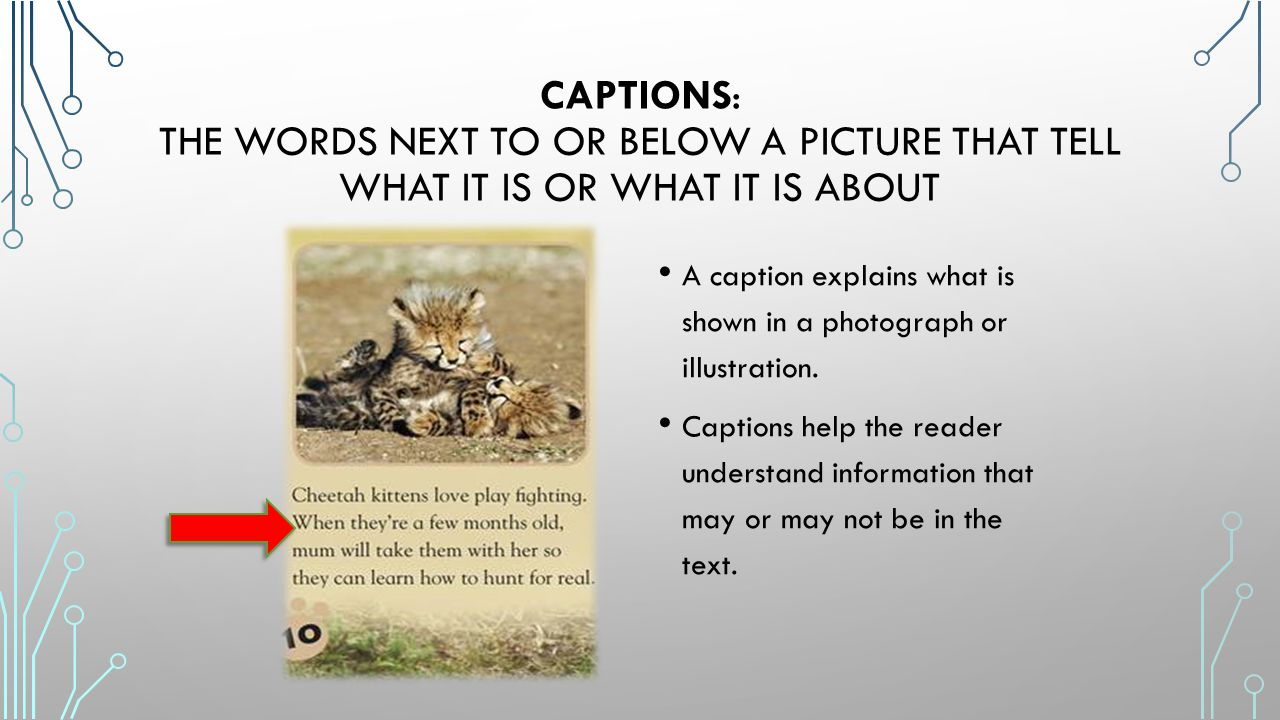 how to add captions to download videos