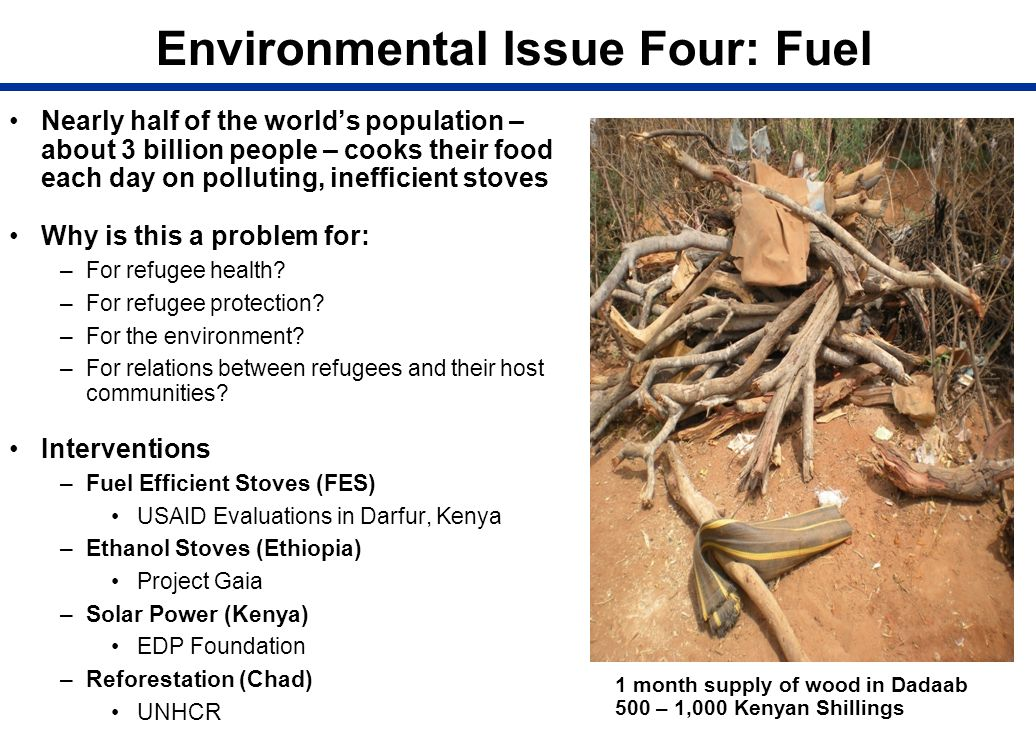 Environmental Issue Four: Fuel