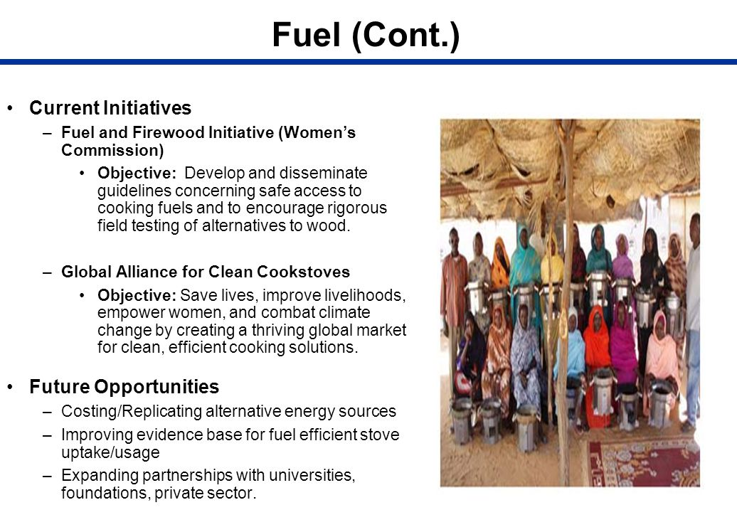 Fuel (Cont.) Current Initiatives Future Opportunities
