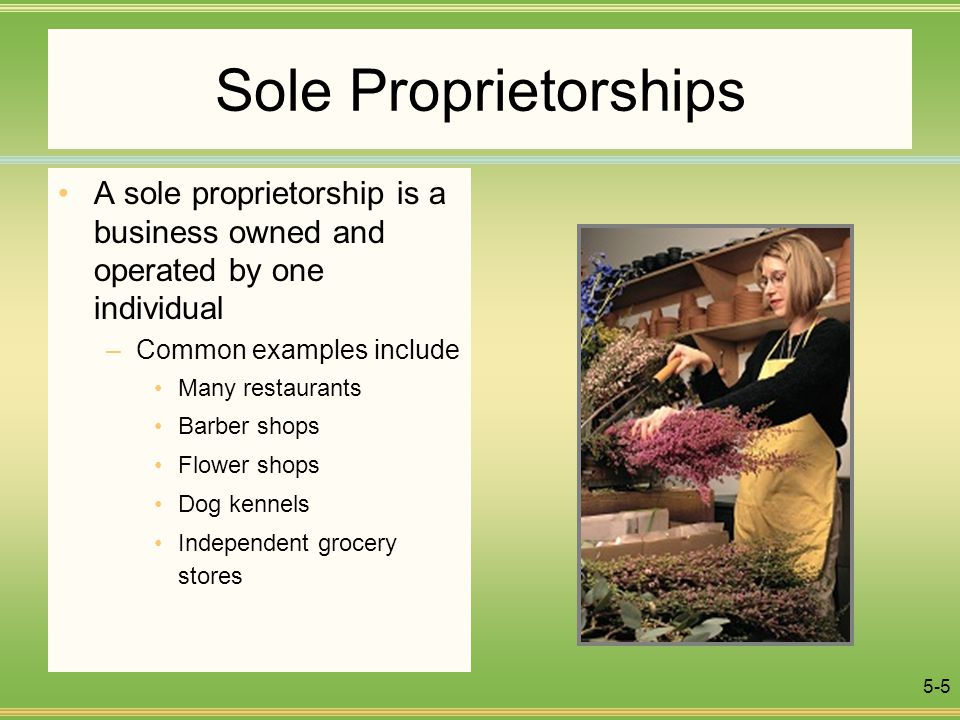 Example of a Sole Proprietorship Business
