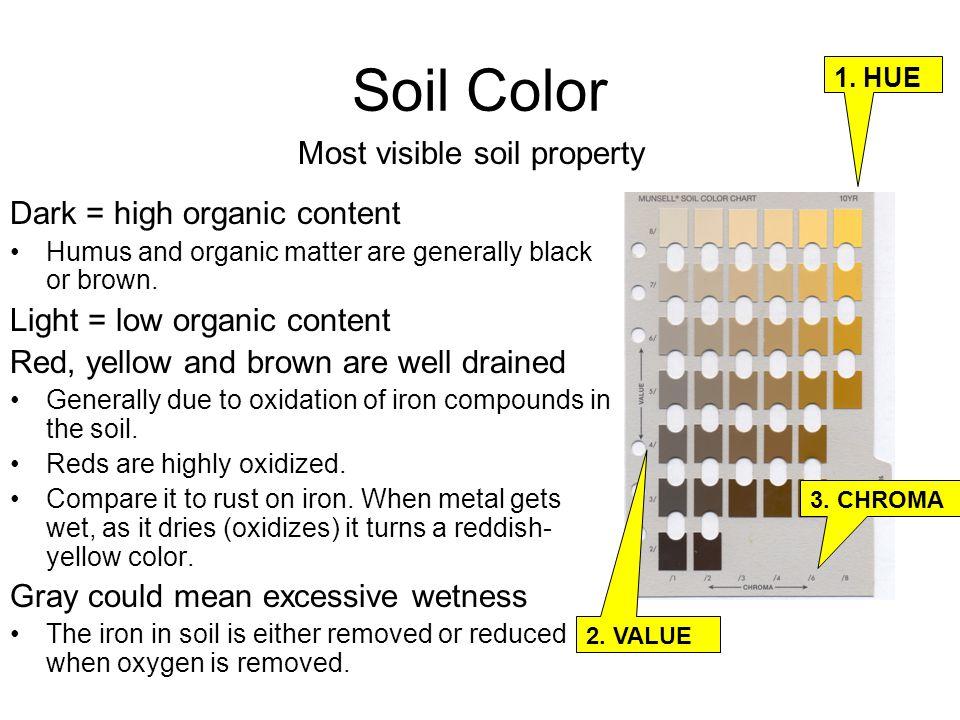 Envirothon soils dennis brezina ppt video online download for Organic soil meaning