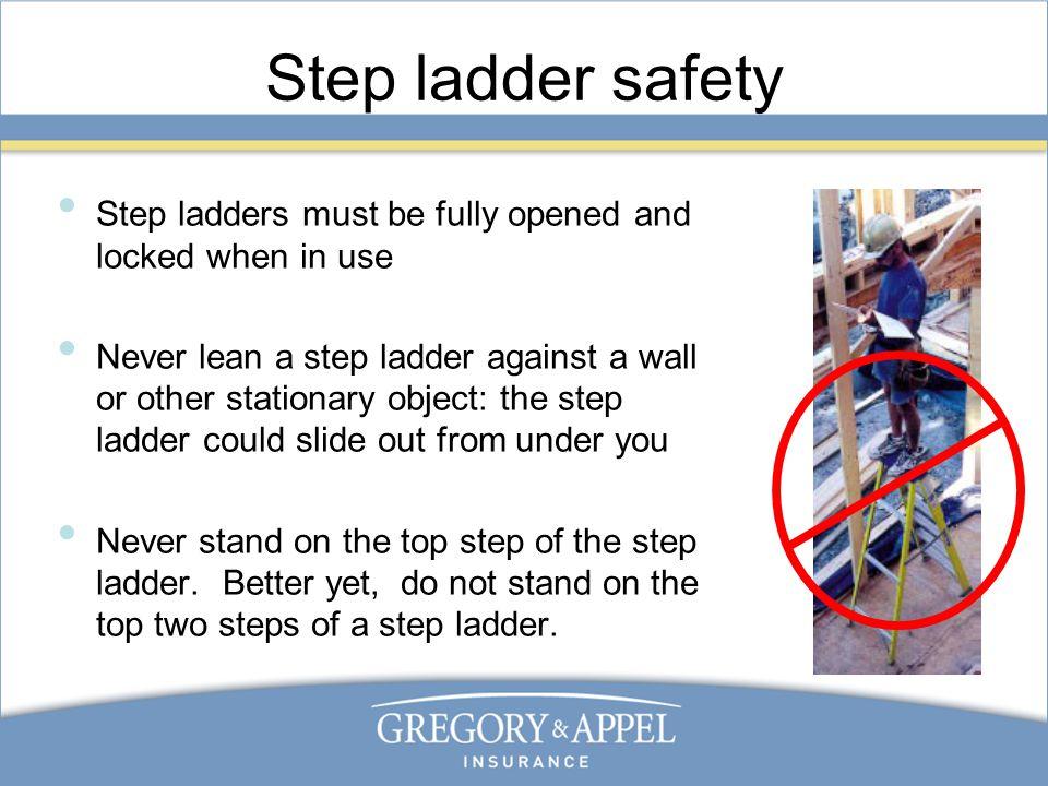 Ladder Safety Training Ppt Video Online Download