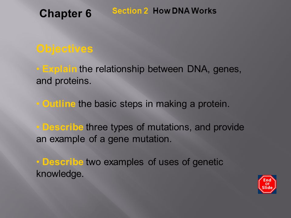 describe the relationship between genes proteins and traits