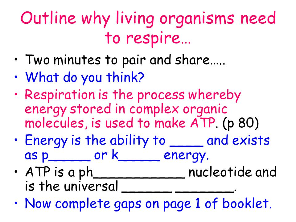 Why is energy required for living things?