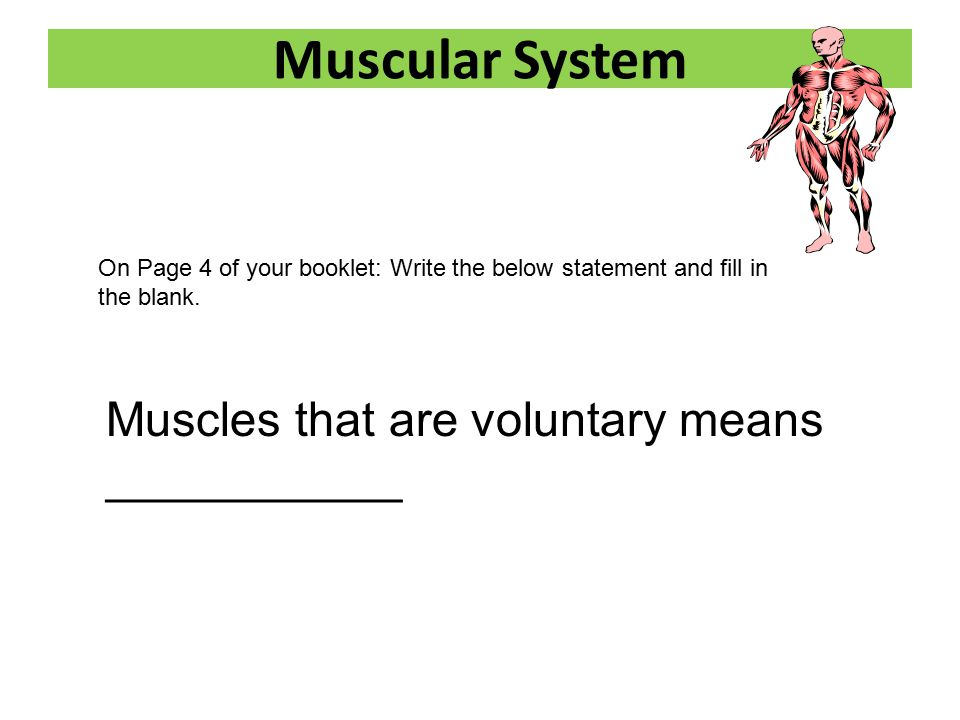 Human Body Systems Booklet - ppt video online download