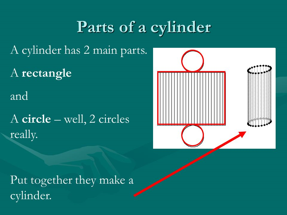 Parts of a cylinder A cylinder has 2 main parts. A rectangle and