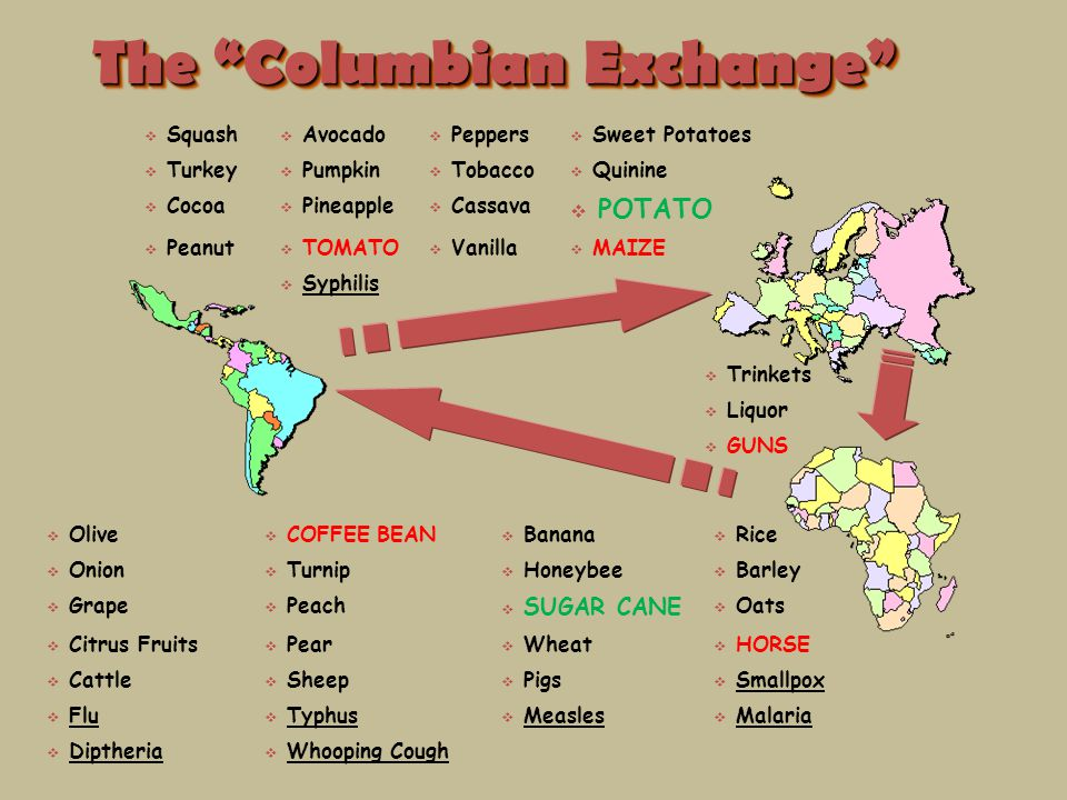 effects of the columbian exchange and tobacco The columbian exchange had lasting effects on both the old  vanilla was not only used for flavoring, it was also used for scents in perfumes and tobacco.
