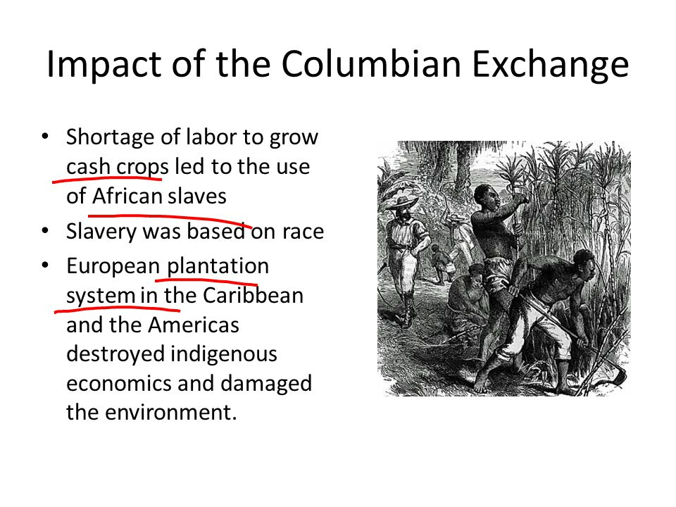 the effects of the african economies on the environment From southeast asia to russia, africa, and the americas, the ratios between land availability and the usable labor force were the primary basis of pre-industrial economies, but politics, environment, and culture played a part as well.