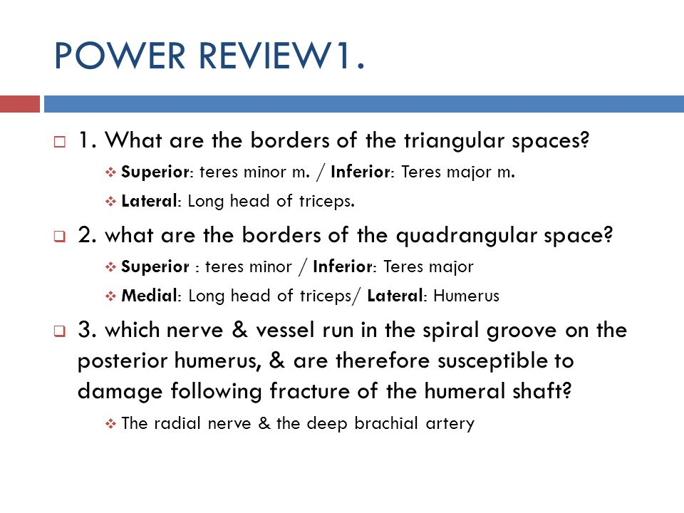 POWER REVIEW1. 1. What are the borders of the triangular spaces