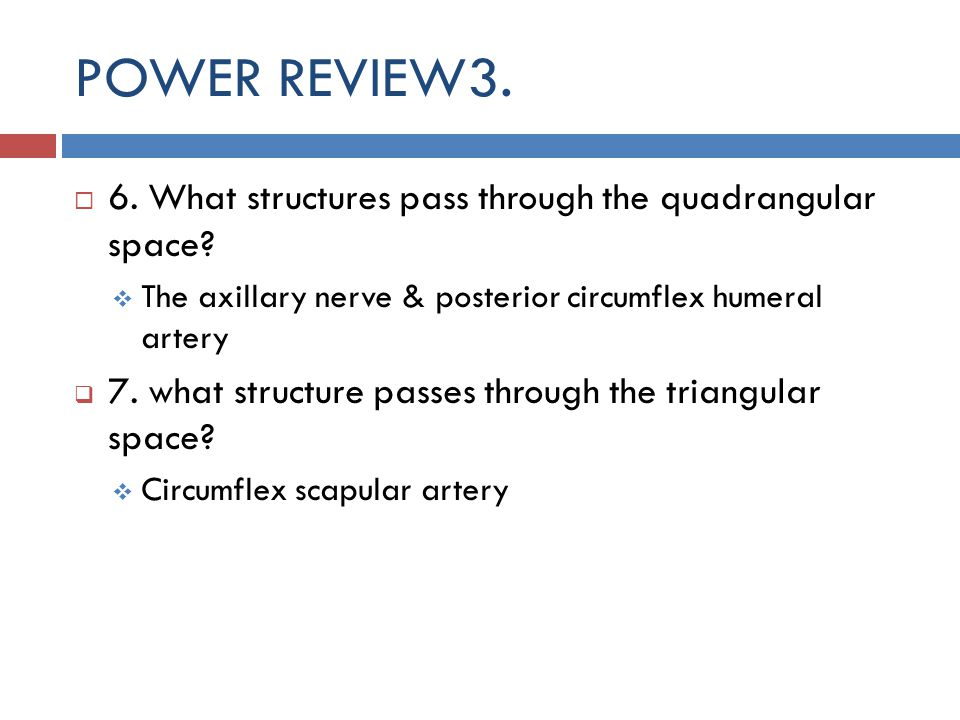 POWER REVIEW3. 6. What structures pass through the quadrangular space