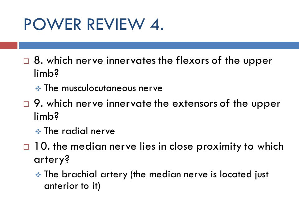 POWER REVIEW which nerve innervates the flexors of the upper limb The musculocutaneous nerve.