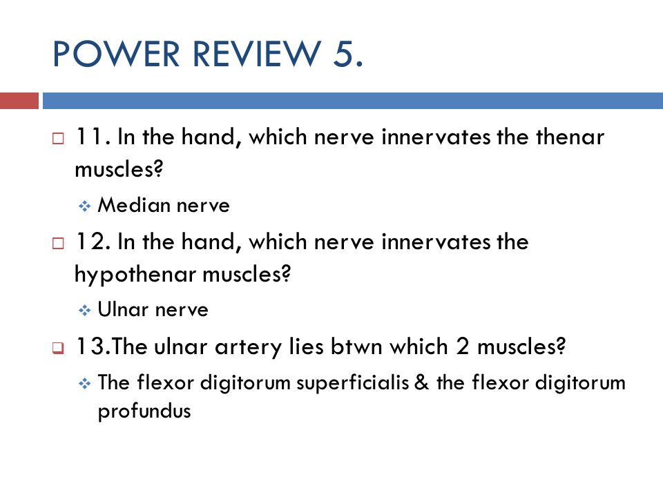 POWER REVIEW In the hand, which nerve innervates the thenar muscles Median nerve.