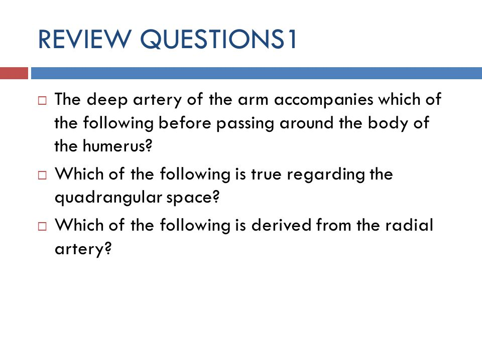 REVIEW QUESTIONS1 The deep artery of the arm accompanies which of the following before passing around the body of the humerus