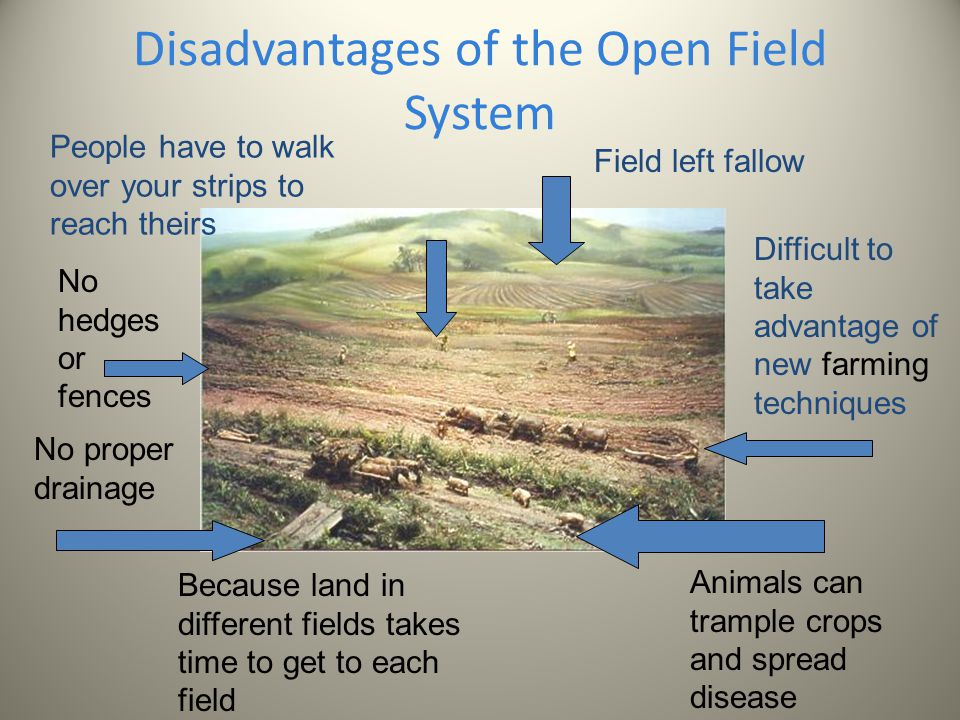 advantages and disadvantages of open field farming We have grouped these advantages and disadvantages of simulation into three  broad  how will this impact traffic during the farmer's market  between focus  on a specific deliverable and open-ended exploration is a good step to take early  in the planning process  fields marked with an  are required.