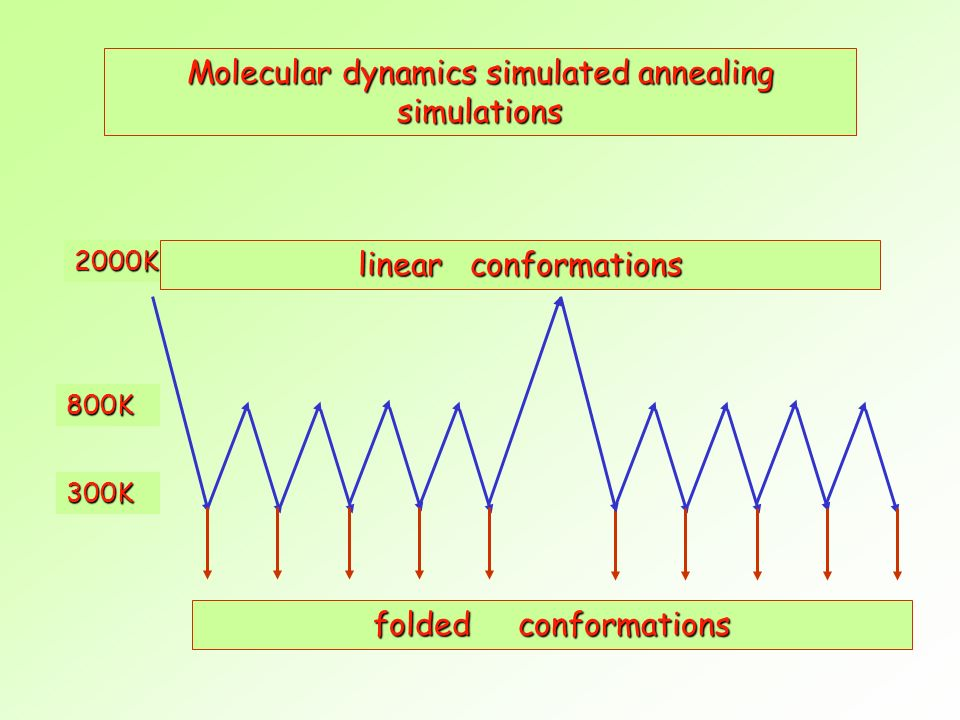 Molecular dynamics simulated annealing simulations