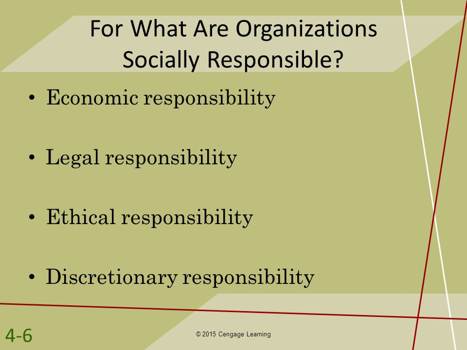 For What Are Organizations Socially Responsible