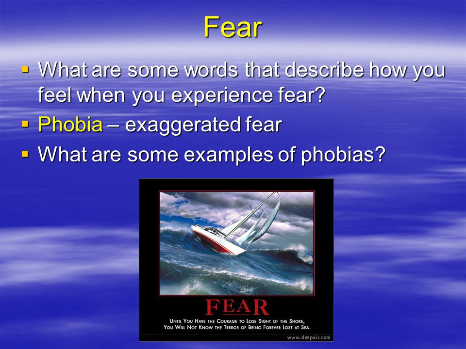 Fear What are some words that describe how you feel when you experience fear Phobia – exaggerated fear.