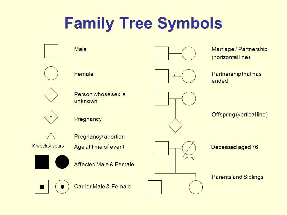family tree symbols