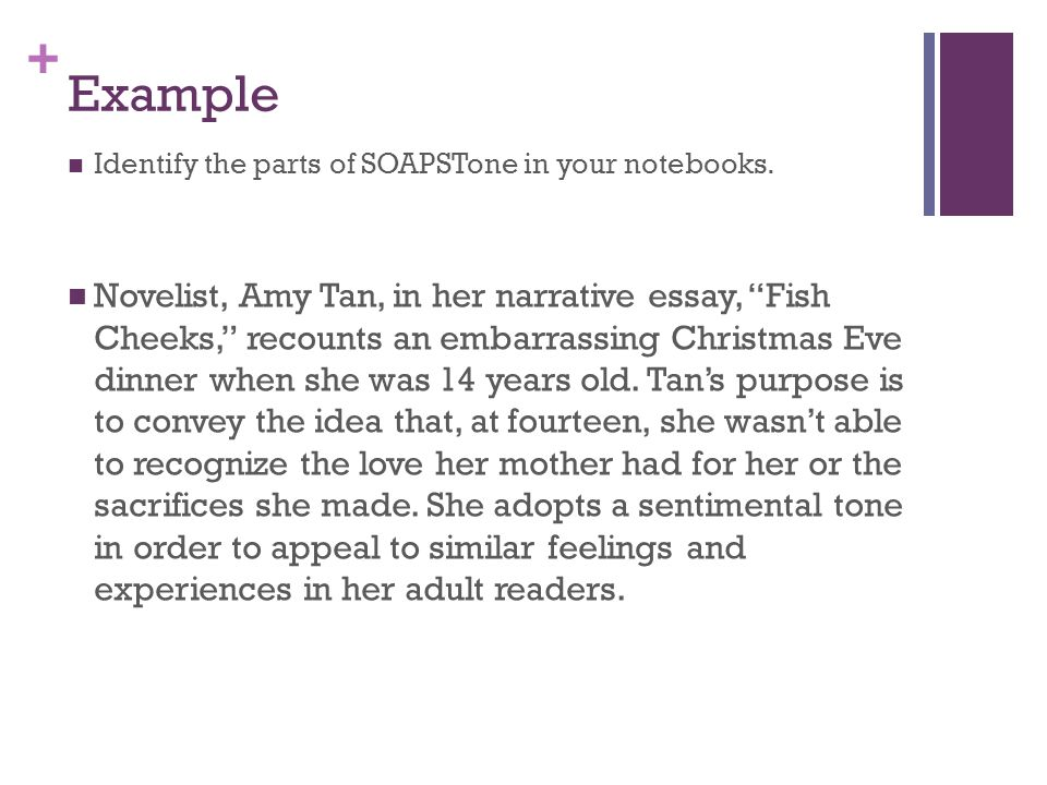 amy tan summary essay Mother tongue, by amy tan - mother tounge author: heather simon created date: 20130801180907z.