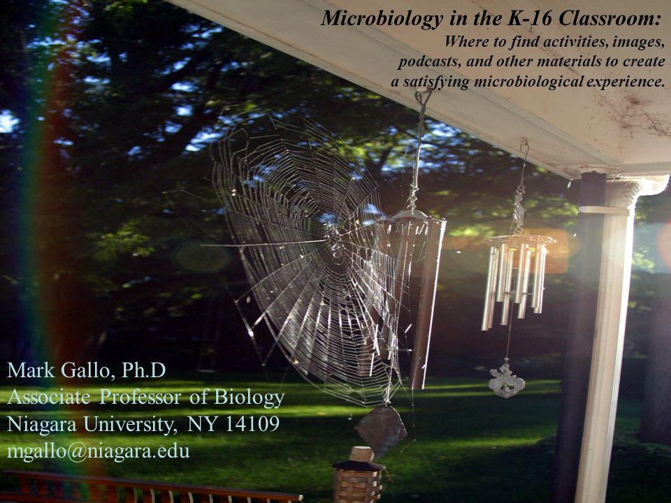 Microbiology in the K-16 Classroom: