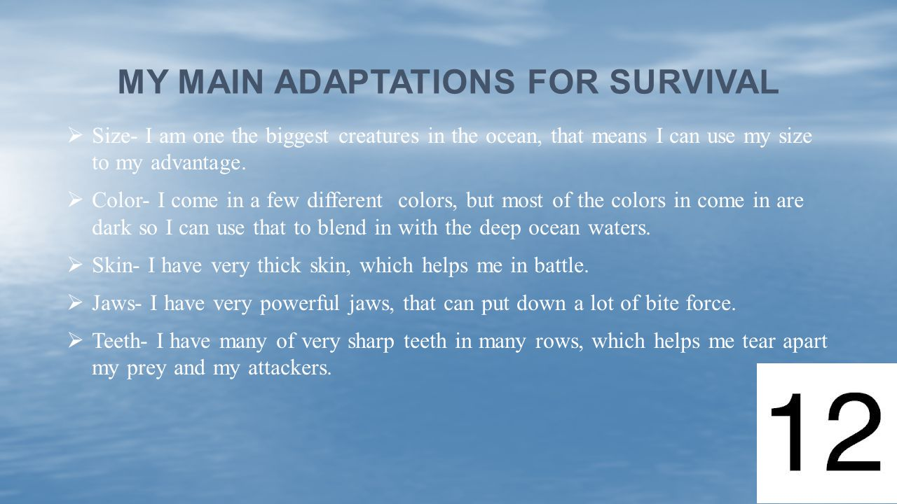 My main adaptations for survival