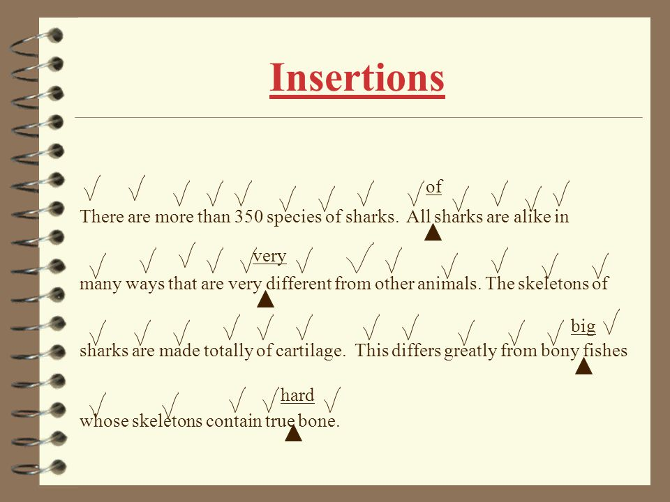 Insertions of. There are more than 350 species of sharks. All sharks are alike in.