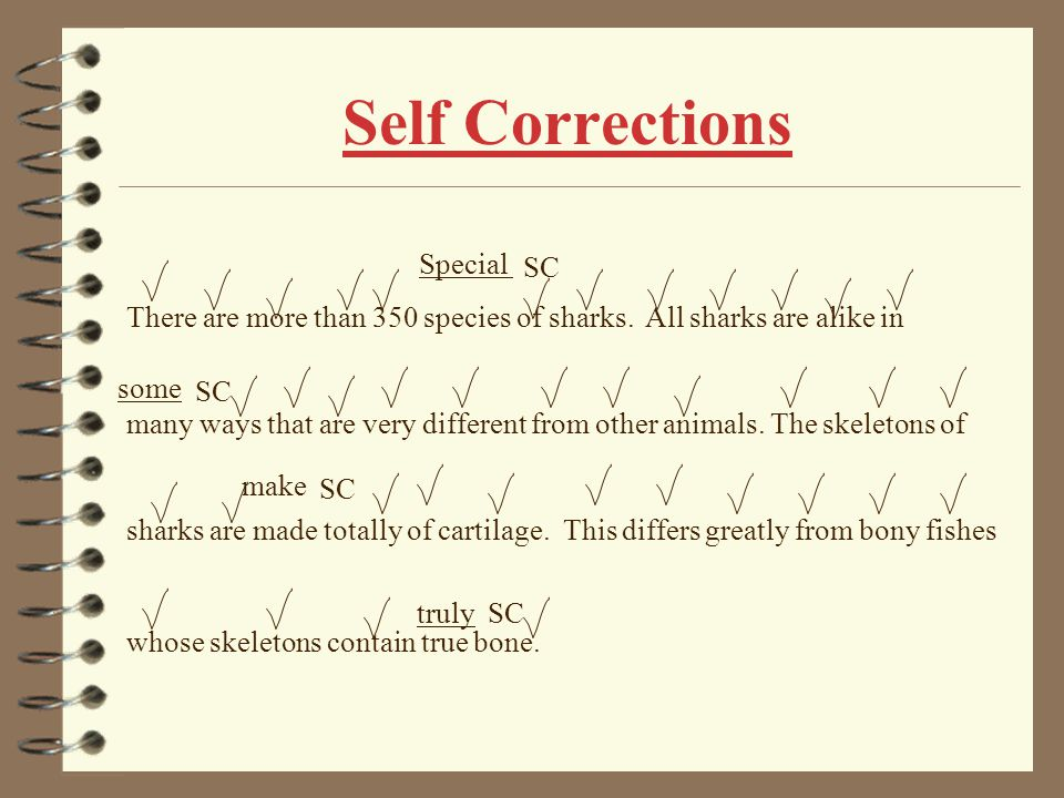 Self Corrections Special SC