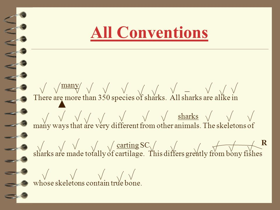 All Conventions many. _. There are more than 350 species of sharks. All sharks are alike in.