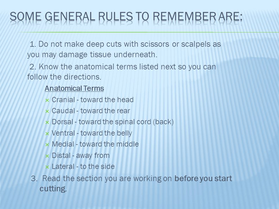 Some general rules to remember are: