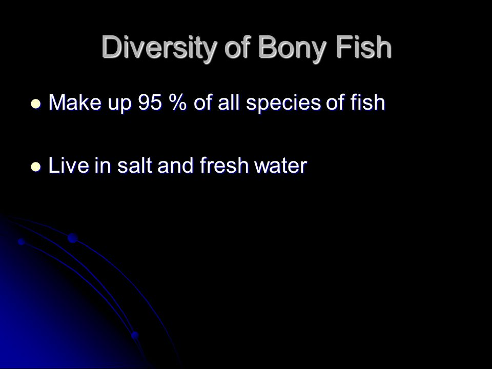 Diversity of Bony Fish Make up 95 % of all species of fish