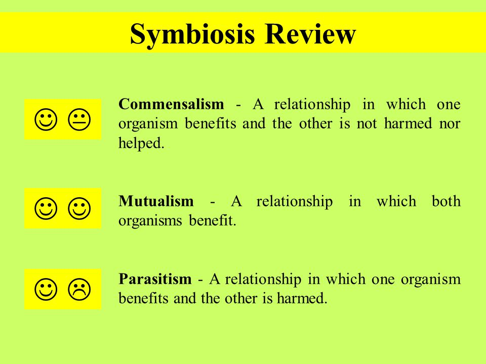symbiotic and non relationship of an organism refers
