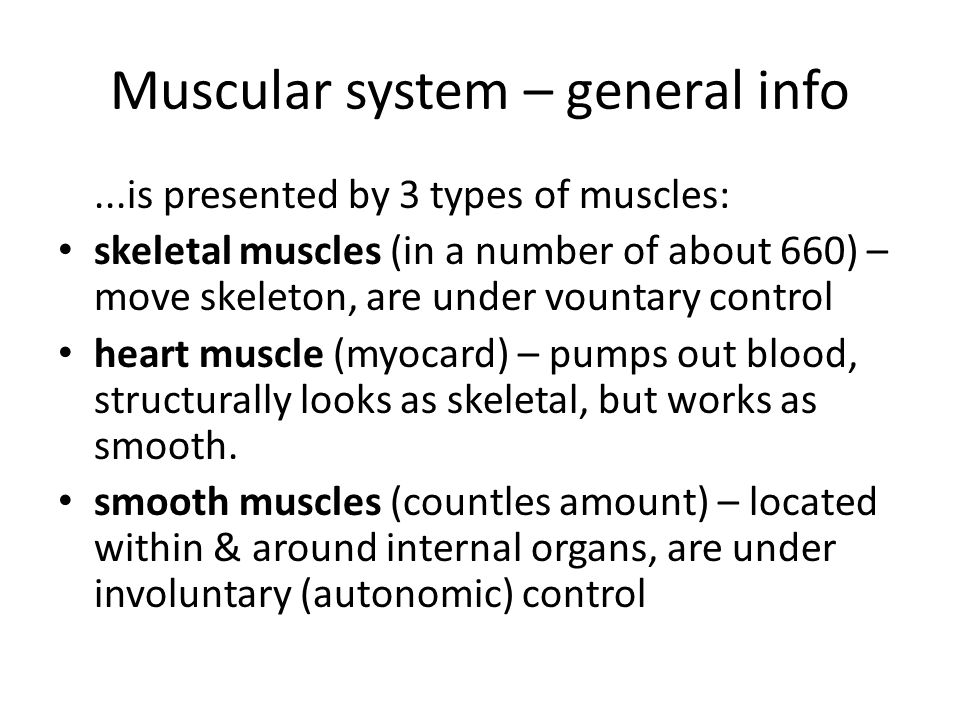 basic kinesiology. muscular system - ppt download, Muscles
