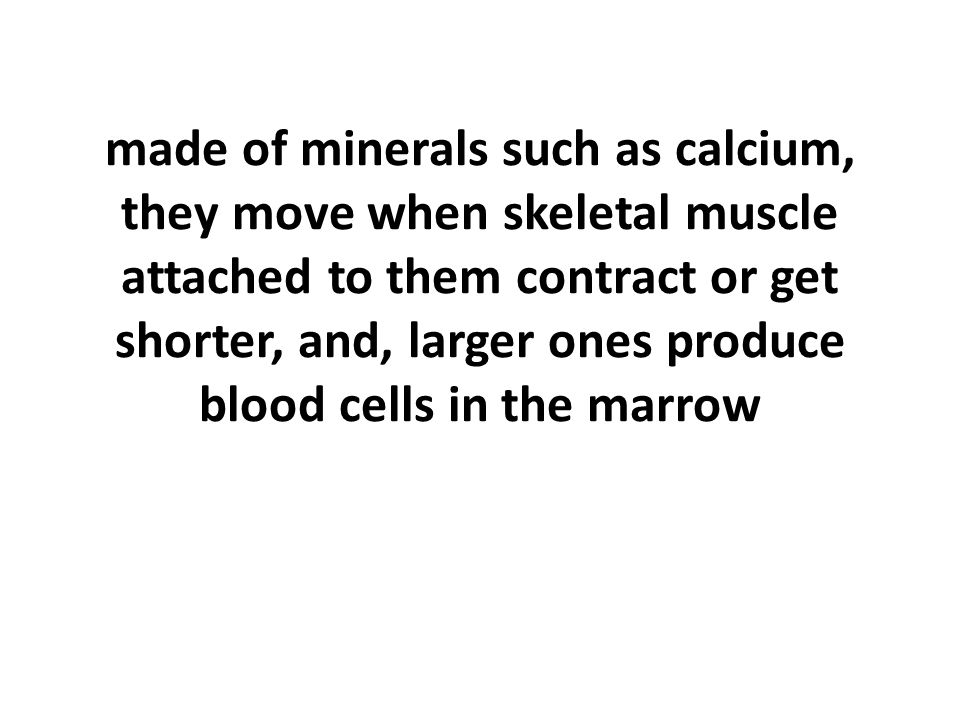 made of minerals such as calcium, they move when skeletal muscle attached to them contract or get shorter, and, larger ones produce blood cells in the marrow