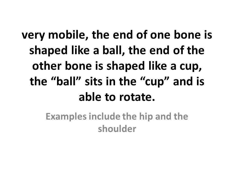 Examples include the hip and the shoulder