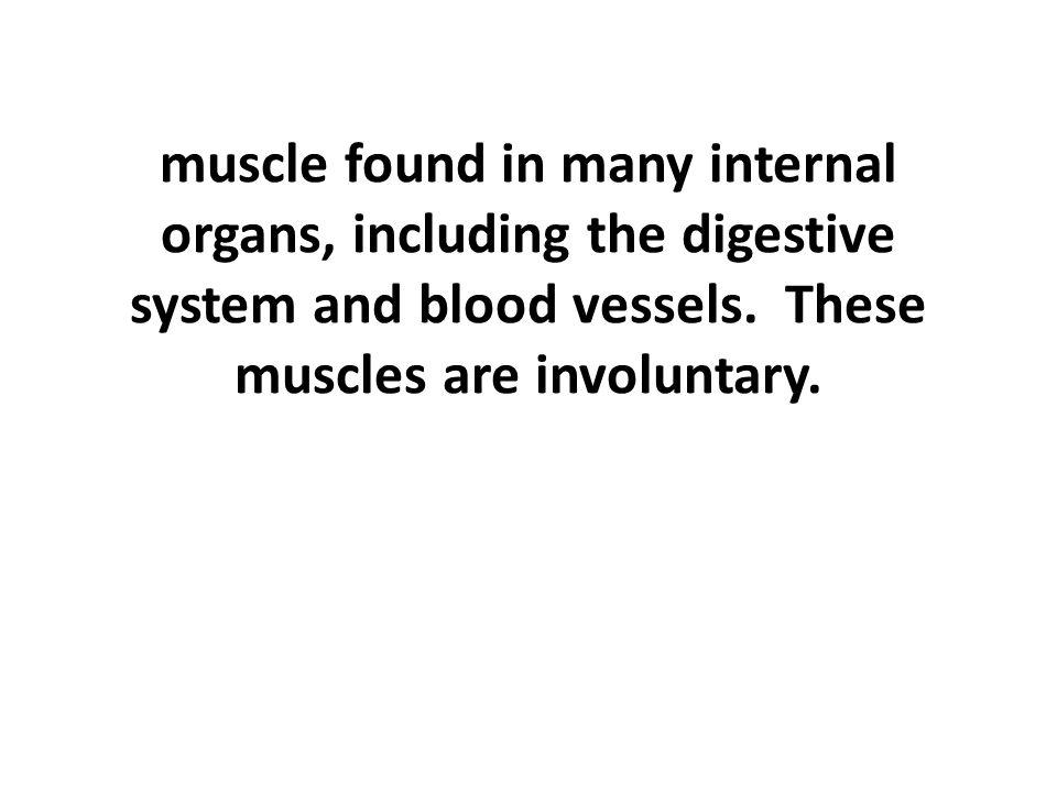 muscle found in many internal organs, including the digestive system and blood vessels.