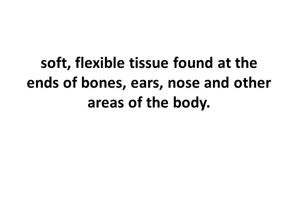soft, flexible tissue found at the ends of bones, ears, nose and other areas of the body.